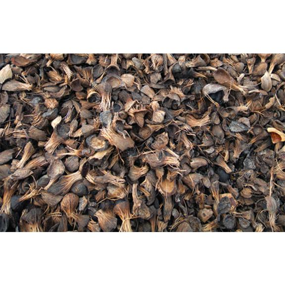Pks Palm Kernel Shell